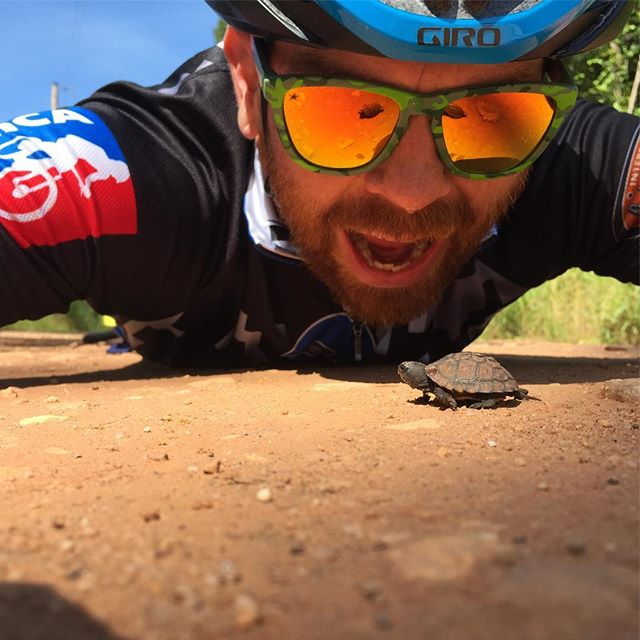 Checking out the critters big and small on my gravel ride this morning. #turtlepower #gravel #konabikes #konasutra